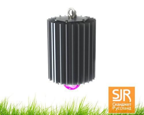 Светодиодный светильник ФИТО-100