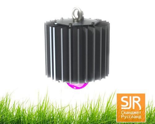 Светодиодный светильник FITO-50